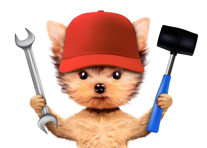 Rolig hund med skiftnyckeln och hammaren som isoleras på vit fotografering för bildbyråer