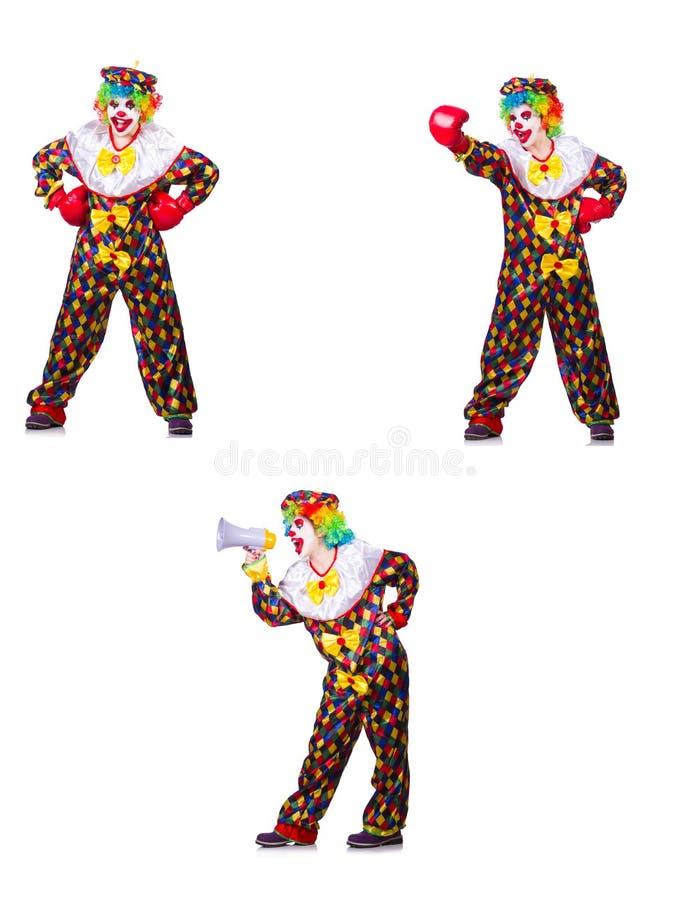 Rolig manlig clown med den boxninghandskar och h?gtalaren fotografering för bildbyråer