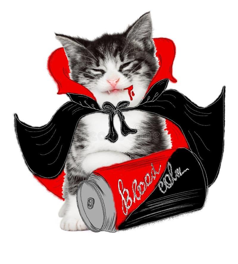 Rolig ond katt på vit bakgrund arkivfoto