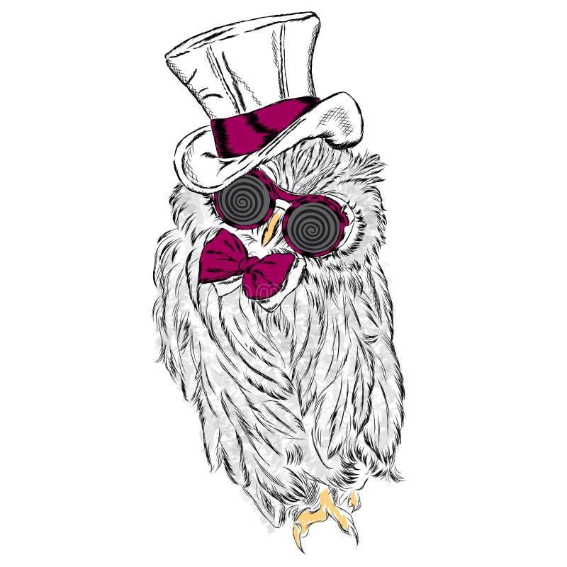 Rolig uggla i en ovanlig hatt och solglasögon stock illustrationer
