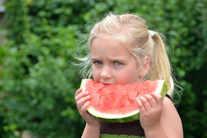 Download Rolig vattenmelon fotografering för bildbyråer. Bild av lycka - 19786523