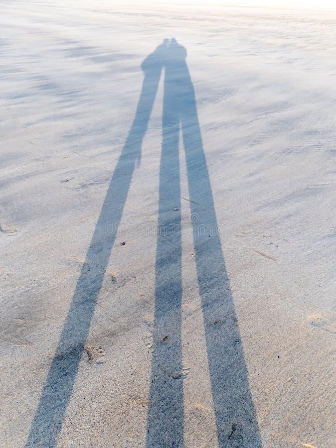 Roliga skuggor av par på stranden med djupt solljus royaltyfri bild