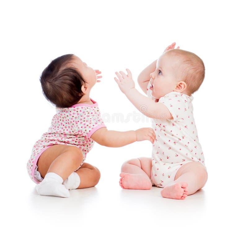 Roligt behandla som ett barn barnflickor som tillsammans leker fotografering för bildbyråer