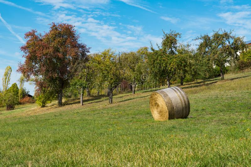 Roll hay in field along Romantic Road Weikersheim, Germany royalty free stock photos