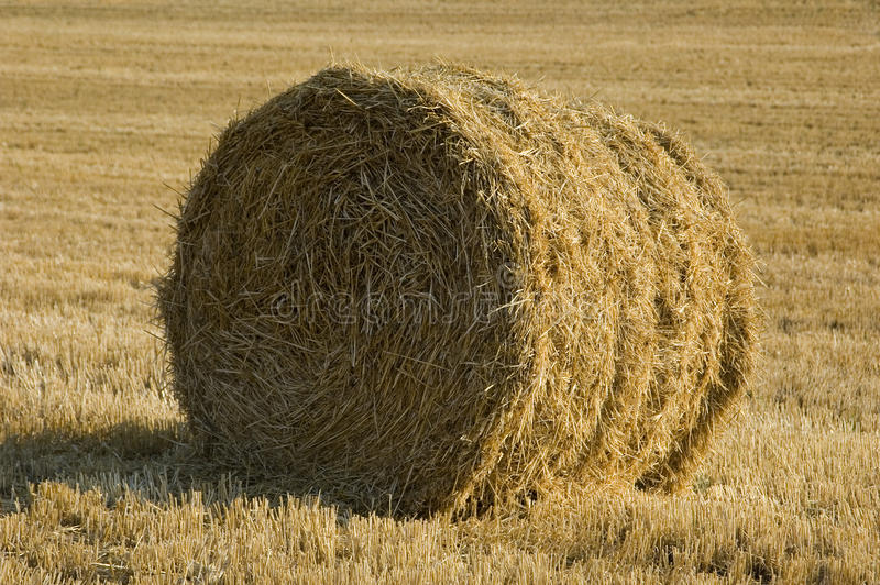 Roll of hay. royalty free stock photos