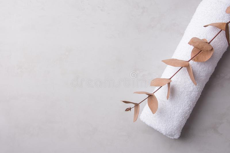 Rolled clean white fluffy terry towel eucalyptus branch on pastel gray stone background. Minimalist scandinavian style. Women`s baby hygiene laundry body care royalty free stock images