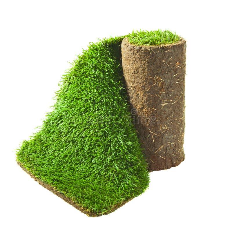 Rolled green grass stock photos