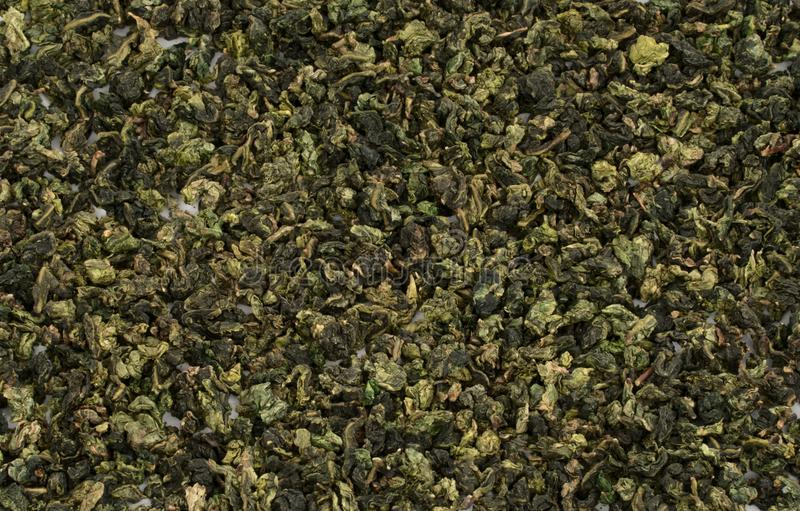 Rolled leaves of Chinese Oolong green tea isolated background stock photography