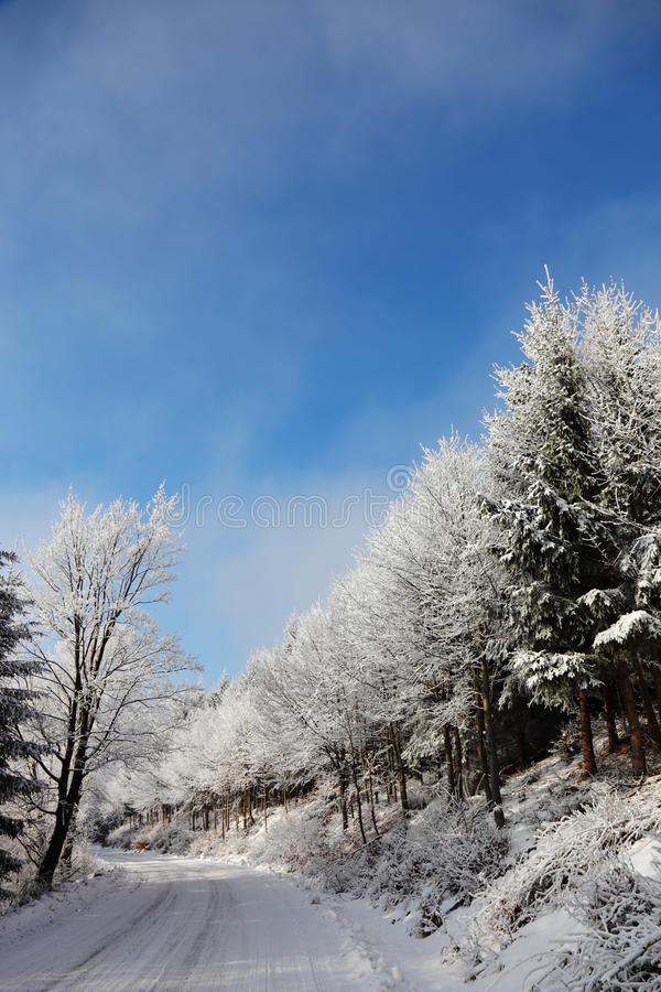 Download Rolled  Road In The Snow Stock Image - Image: 16382361