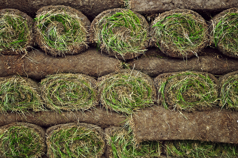 Rolled sod. Stack of rolled grass sod or turf for lawns and landscaping stock photo