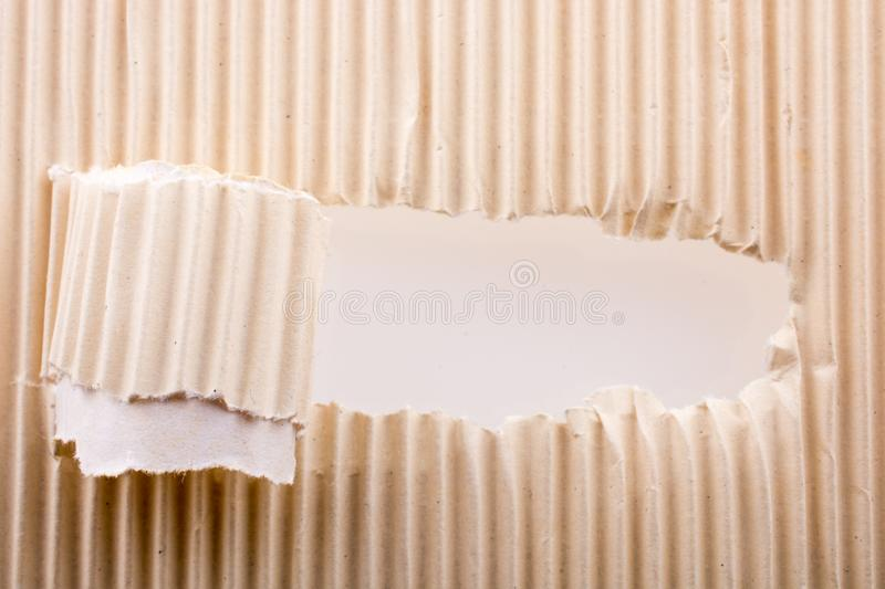 Rolled up torn paper. On a white background royalty free stock images