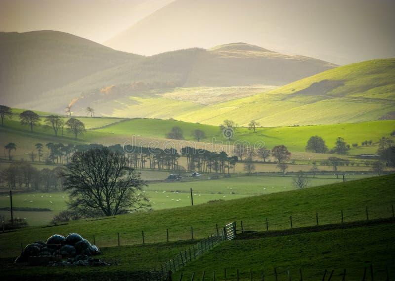 Rollende ländliche Hügel stockfotos