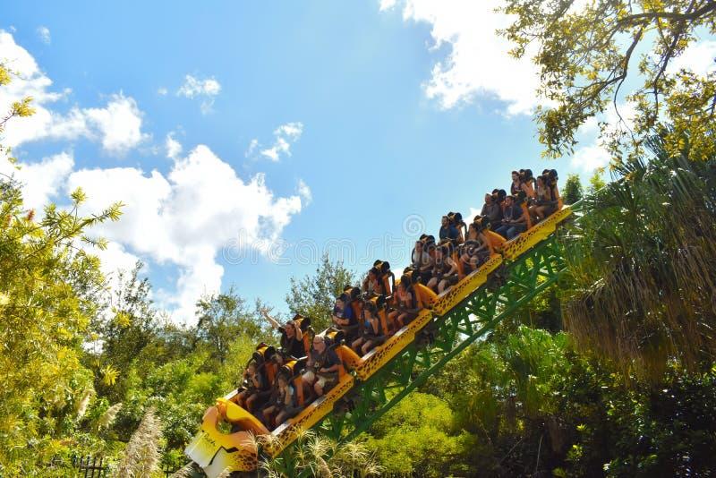 Roller coaster de la caza del guepardo de la diversión en los jardines de Bush Los jinetes proceden sobre un cambio direccional fotos de archivo