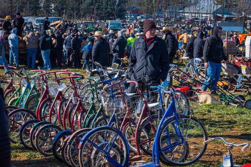 Roller-Fahrräder lizenzfreies stockfoto