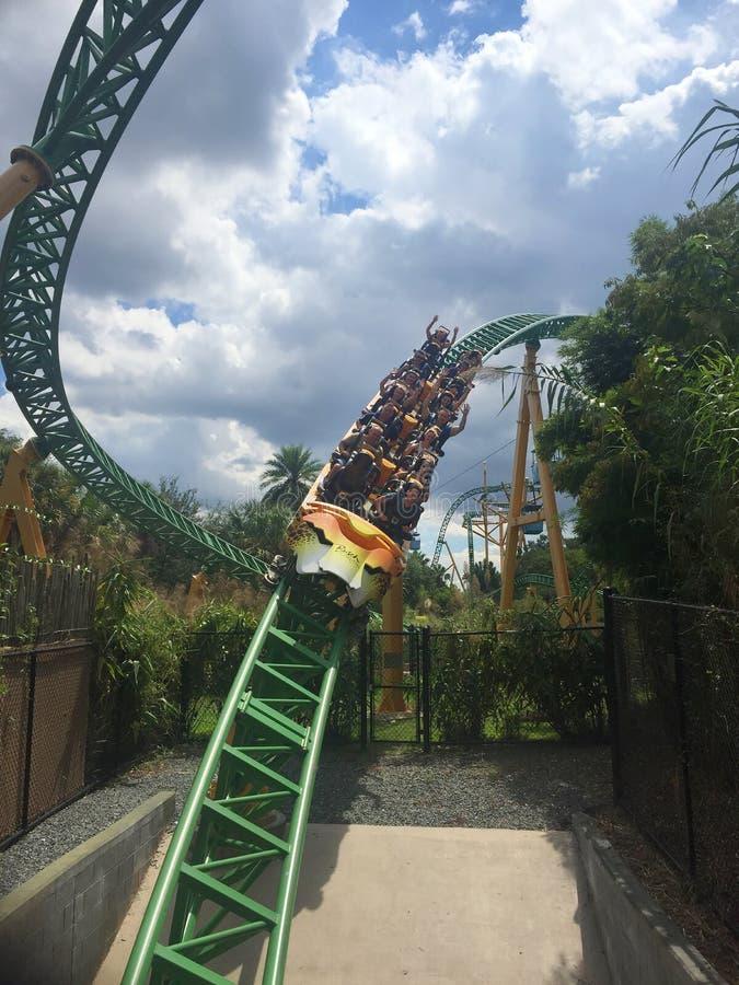 Rollercoaster κήποι Busch στοκ φωτογραφίες με δικαίωμα ελεύθερης χρήσης