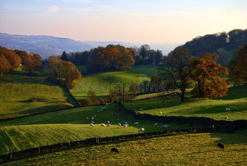 Download Rolling English Countryside In Autumn Stock Image - Image: 7254329