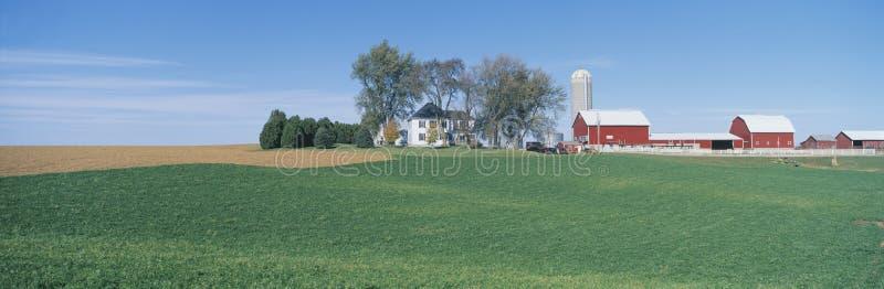 Rolling Farm Fields, Great River Road, Balltown, N.E. Iowa royalty free stock image