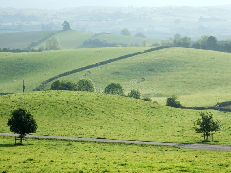 Rolling farmland near Kendal stock photos