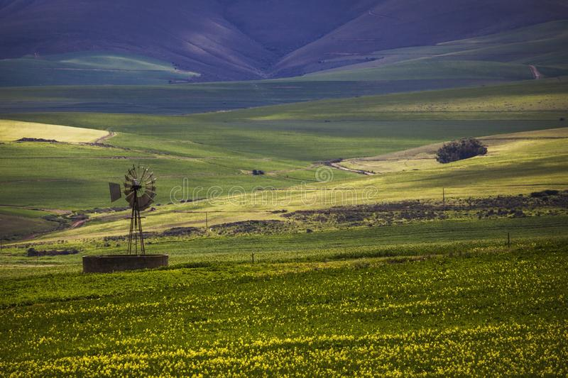 Rolling green agricultural fields with a windmill and mountains in the background - Caledon, Western Cape - South Africa. stock photo