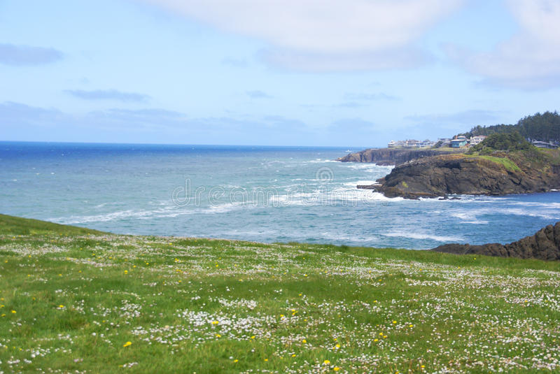 Download Rolling Green Meadows And Pacific Ocean Stock Image - Image: 11492369
