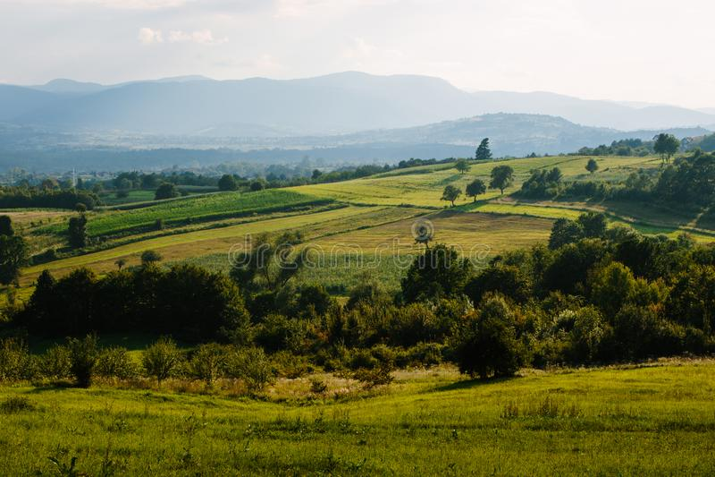 Rolling Heuvels in Caparde, Bosnië stock fotografie