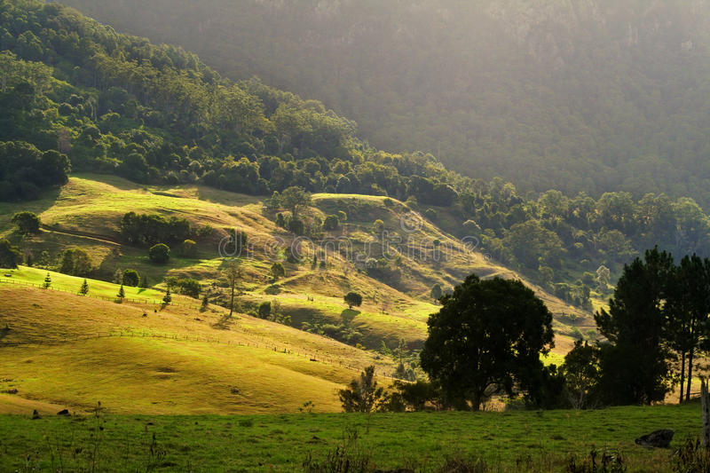 Download Rolling Hills stock image. Image of farmland, bushes - 26905243