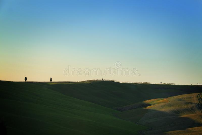 Rolling Hills, Cypress Trees, and Minimalism stock photo
