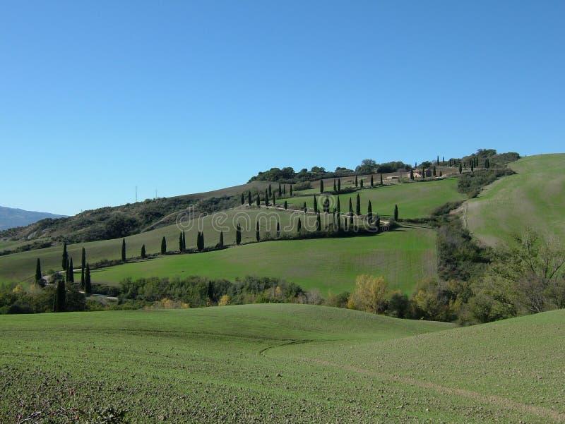 Rolling Hills della Toscana Italia fotografie stock