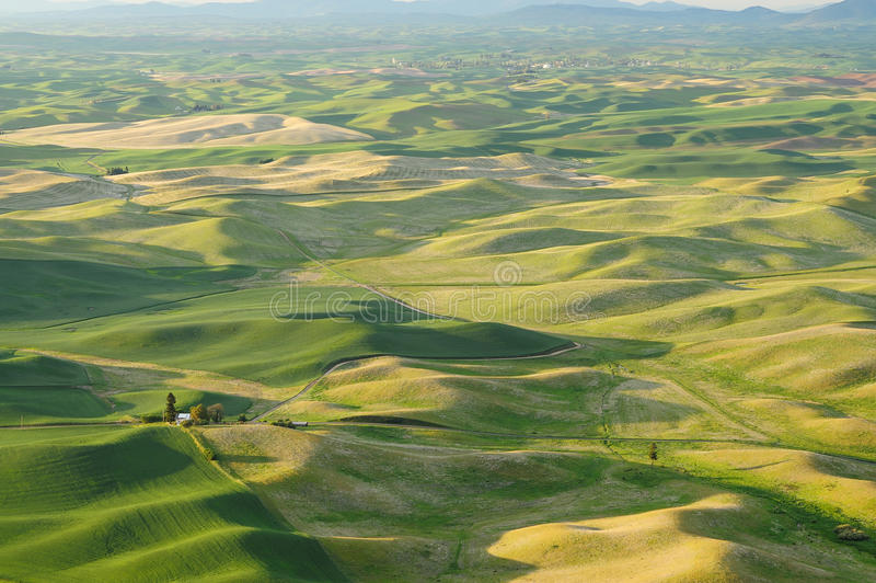 Rolling hills and fields stock photography