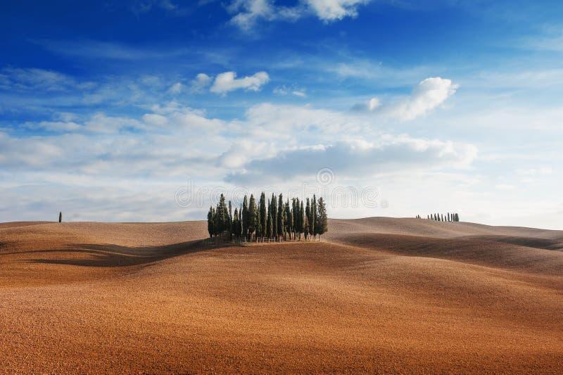 Rolling Hills, kleiner Zypressenbaumwald und blauer Himmel mit Wolken im toskanischen Landschaftslandschaftspanoramablick an eine lizenzfreie stockfotografie
