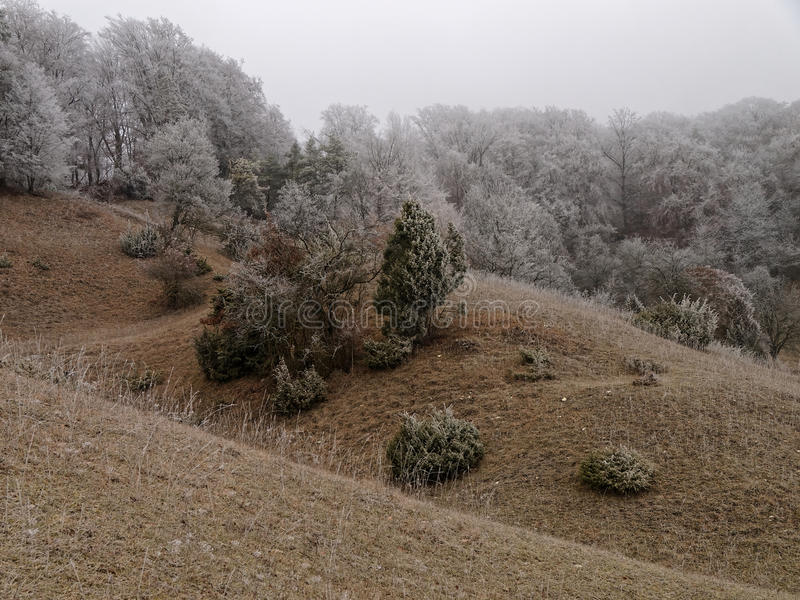 Rolling hills landscape cold and frosted stock image