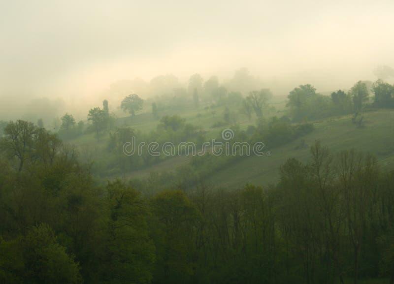 Rolling Hills nella foschia fotografia stock