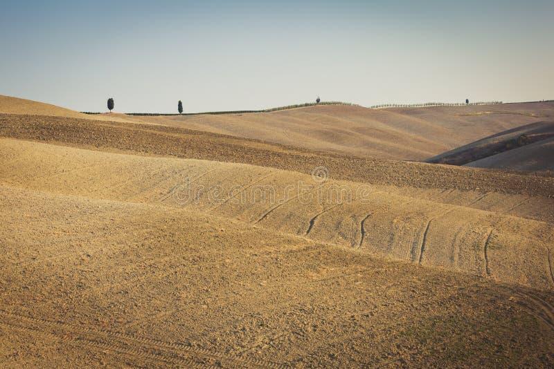 Rolling Hills vacía del campo de Toscana en Val d 'Orcia foto de archivo libre de regalías