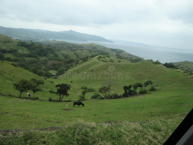 Rolling hills royalty free stock photography