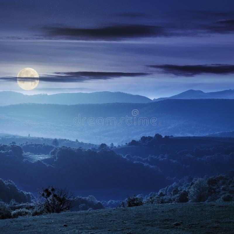 Rolling Hills verde do campo de romania fotografia de stock