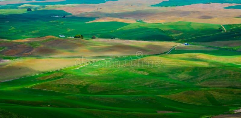 Rolling Hills verde na mola imagem de stock