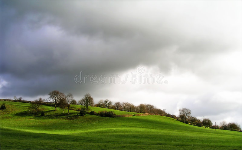 Download Rolling hillside stock photo. Image of countryside, hedge - 146210