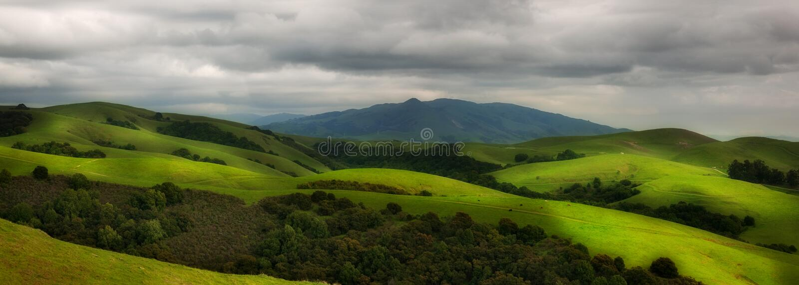 Download Rolling hillside pasture stock image. Image of northern - 24104571