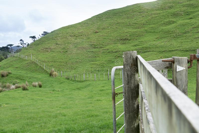 Rolling New Zealand farmland. With batten and wire fence running from gate stock photo