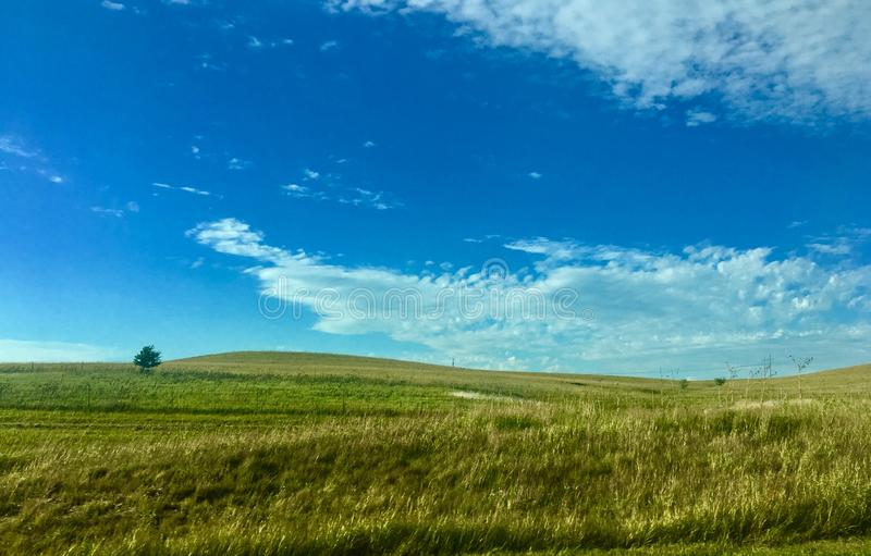 Rolling plains with tall grass and blue skies stock photo