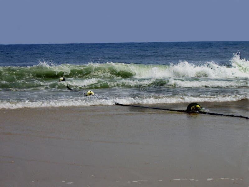 Download Rolling Waves stock photo. Image of waves, coastline, foam - 194436