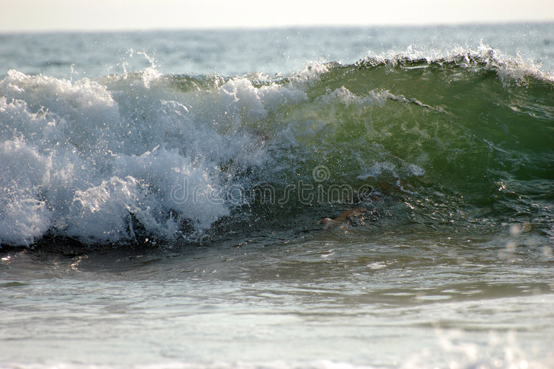 Rolling Waves royalty free stock photos