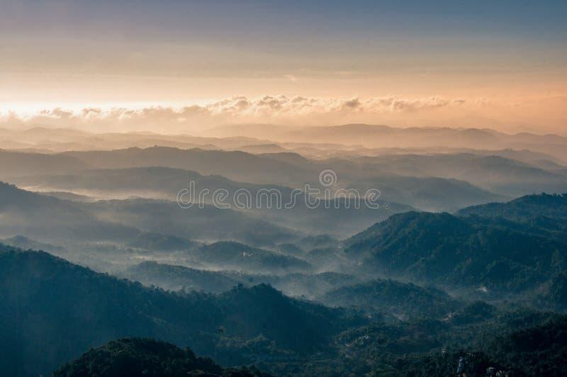 Rollinget Hills av det Munnar landskapet, Kerala Indien arkivbilder