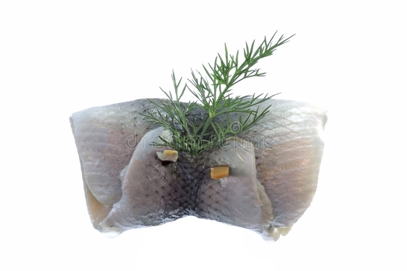 Download Rollmop stock image. Image of rollmop, dill, headache - 9103031