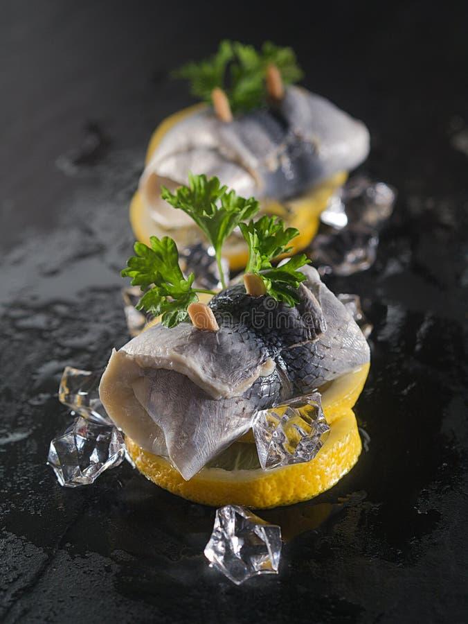 Rollmop-Heringe auf Zitronenscheiben und Eiswürfeln lizenzfreies stockfoto