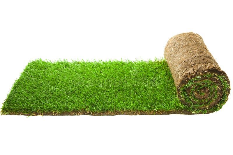 Rollo de la alfombra de la hierba fotografía de archivo