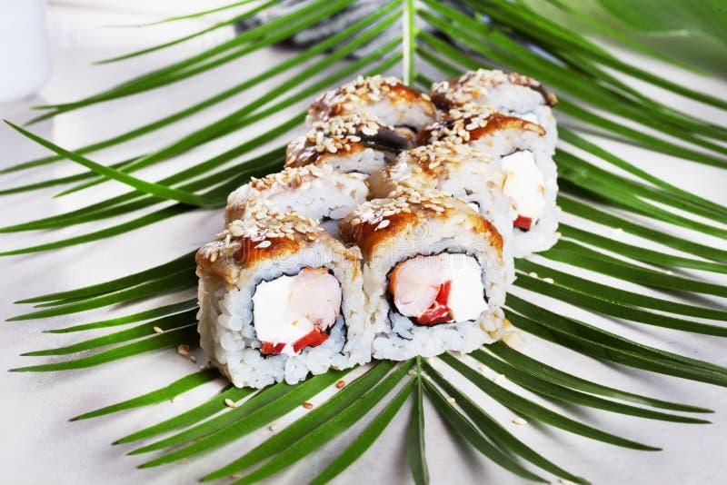 Rollo de Philadelphia con la comida del sushi de la anguila en hojas de palma tropicales al camarón del menú, atún fotografía de archivo libre de regalías