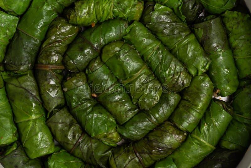 rollos crudos de la col verde cerca para arriba imagen de archivo libre de regalías