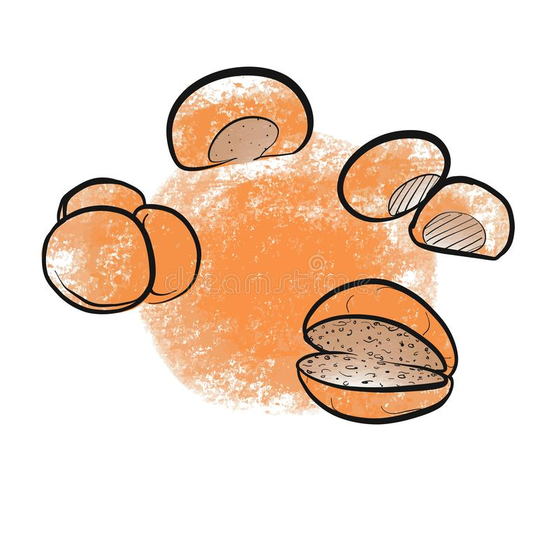 Rollos de pan exhaustos de la mano ilustración del vector