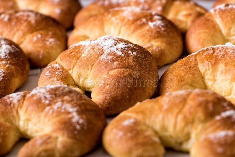 Rollos de pan recientemente cocidos del bollo de leche imágenes de archivo libres de regalías